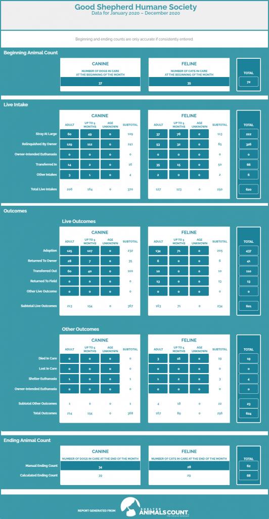 2020 Statistics Graphic